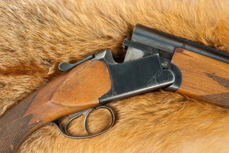 fox fur: Open rifle on fox fur Stock Photo