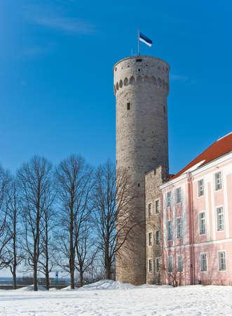 Long Herman (Pikk Herman) tower with Estonian national flag on top in Tallinn, Estonia photo