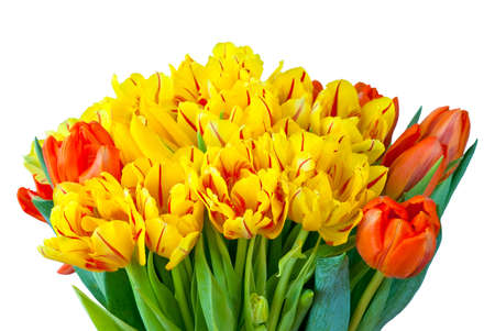 Bouquet of red and yellow tulips isolated on white photo