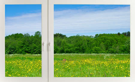 View to the meadow through modern plastic window photo