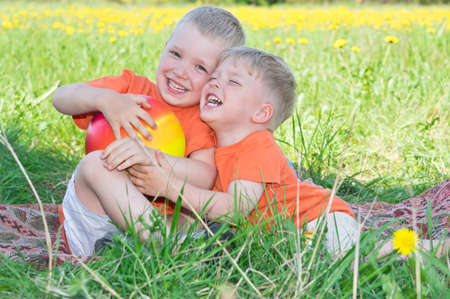 Happy little brothers playing on meadow photo