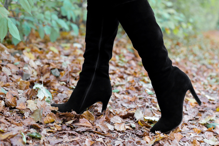 Womens legs in boots on leaves. Beautiful long female legs in black boots against a background of yellow autumn leaves. womens shoes on the autumn street