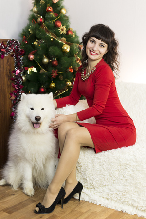 big ball: Girl in red brunette dress and white dog meet Christmas at the Christmas tree