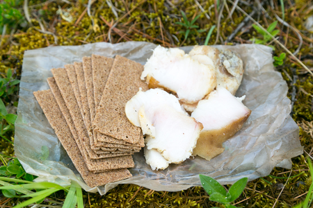 Salted lard and crackers food on the nature. Salty pig fat and dry rye bread.