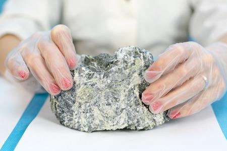 Las manos femeninas sostienen el peligroso mineral amianto. Un técnico de laboratorio de niña sostiene piedras de amianto para su análisis. Foto de archivo