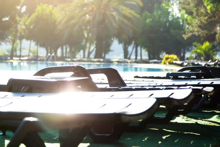 Benches and palm trees. Sunbed for relaxing by the pool.