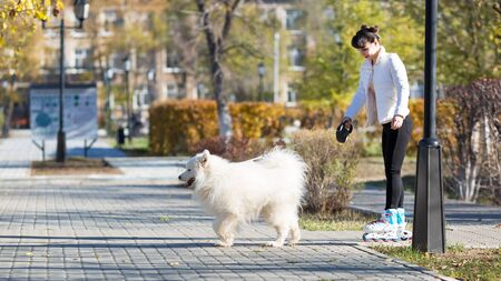 The dog pulls a girl on ice skates. The girl is roller-skating, holding a large white dog by the leash.