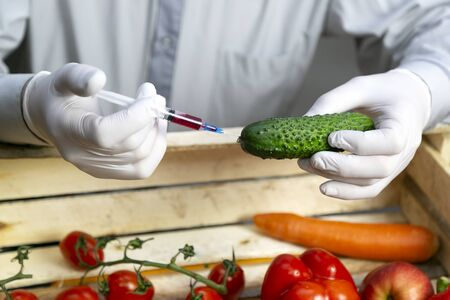 Chemical processing of vegetables, injection with chemicals. A man injects chemicals into a cucumber fertilizers and chemicals with a syringe to increase the shelf life of vegetables