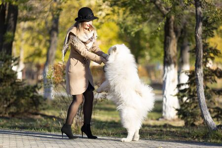 Girl plays with with her dog A large purebred white dog jumps on its mistress, stands on its hind legs.