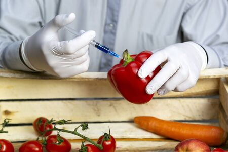 A man injects chemicals into red pepper, GMO fertilizers and chemicals with a syringe to increase the shelf life of vegetables Reklamní fotografie