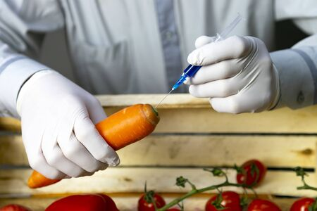 Chemical processing of vegetables, fertilizers and GMOs. A man injects chemicals into carrots, GMO fertilizers and chemicals with a syringe to increase the shelf life of vegetables.