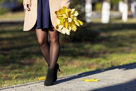 Yellow leaves and a rowan branch in a hand. woman carries an autumn bouquet of maple leaves and rowan branches
