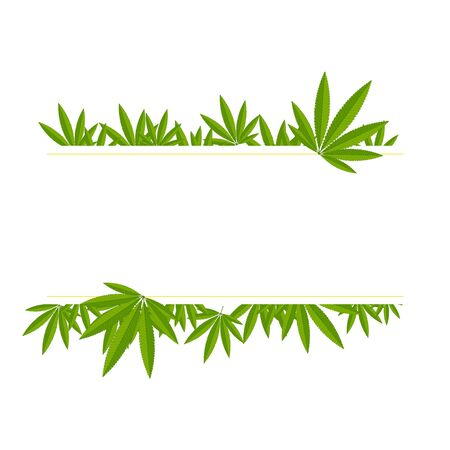 Unfolded hemp branches make up a frame for the inscription on a white background.