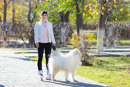 Girl learns to skate walking with a dog. A girl rides roller skates holding her white dog by the leash. Zdjęcie Seryjne