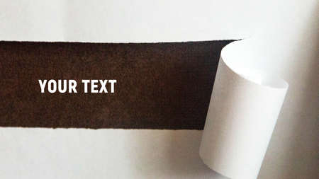 A torn strip of a sheet of white paper is rolled into a roll. Place for your text. Copy space Foto de archivo