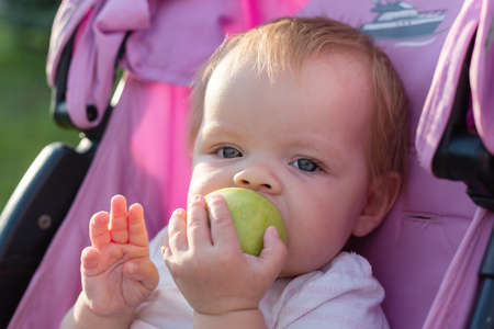 A small blonde child is sitting in a baby carriage and eating an apple. 版權商用圖片