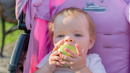 A little girl sitting in baby carriage with a big appetite eats an apple.