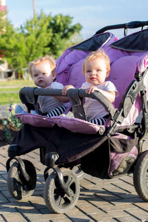 Identical little girls of 6 months of age in a baby carriage on a summer day.