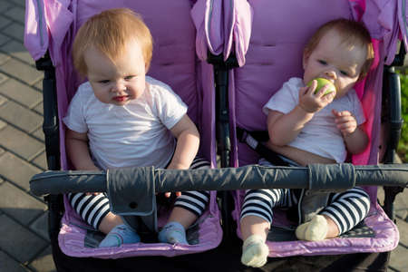 Cute 6 month old children are sitting next to each other in a baby stroller.
