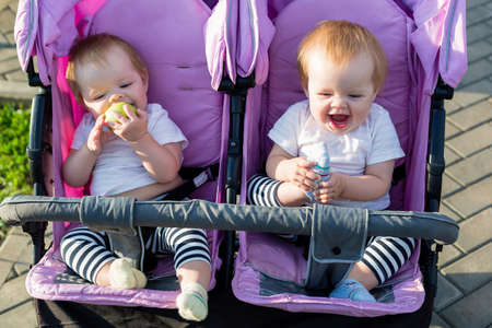 Cute 6-month-old children are sitting next to each other in a baby stroller.