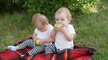 The offended child refuses to eat with his sister in the park on a blanket holding an apple in his hands.