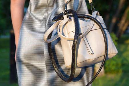 A wild venomous snake crawled unnoticed into a woman's purse.