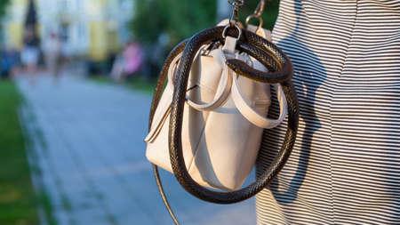 A wild venomous snake crawled unnoticed into a woman purse.