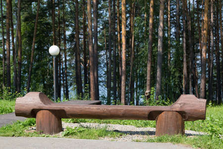 A large creative wooden bench in the park among tall fir trees.