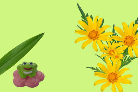 Frog and flower photo