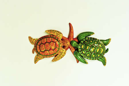 Texture turtle and starfish arranged by concepts Stock Photo - 17870197