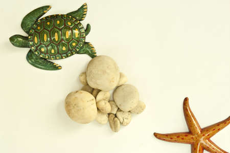Texture turtle starfish and stone arranged by concepts Stock Photo - 17870201