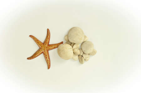 Texture starfish and stone arranged by concepts Stock Photo - 17870178