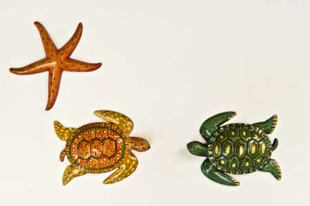 Texture turtle starfish and arranged by concepts Stock Photo - 17870203