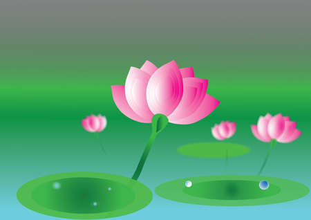 Lotus on the river Vector