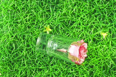 greenish: Pink flowers on the grass Stock Photo