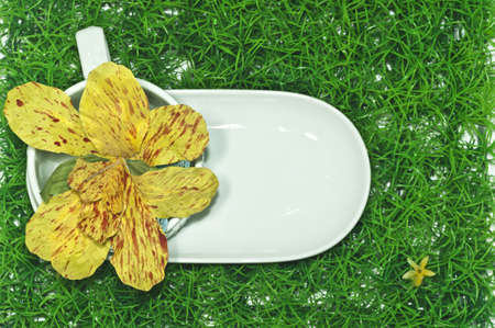 Flowers and plate on the grass
