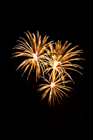 Fireworks Display event photo