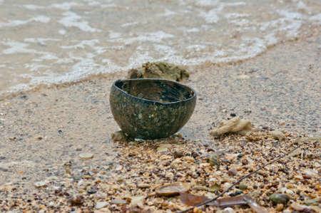 cocoa beach: old coconut empty shell on the beach