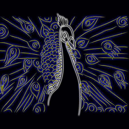 peacock pattern black background