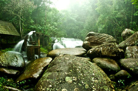 Waterfall in a lush rainforest. Photographed at the National Park in Phu Hin rongkla, Thailand