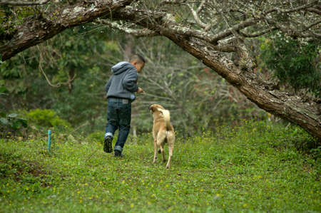 boy and a dog playing in the park Stock Photo