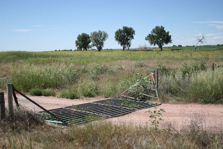 cattle guard: Cattle Guard keeps Hooved Animals Out or In. Stock Photo