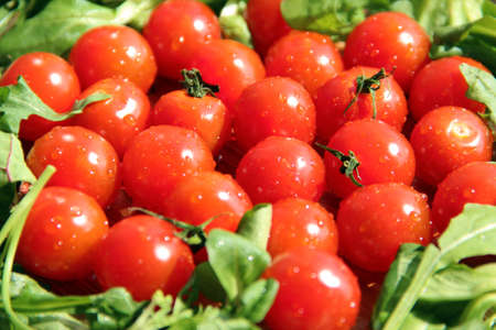 Tomatoes in salad Stock Photo - 13933409
