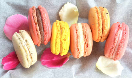 macaroon on paper with rose petals photo