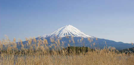 fujisan: Fuji-San in Spring Stock Photo