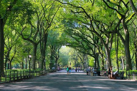 Le centre commercial de Central Park, à New York, en été. NEW YORK, USA: 16 AOÛT 2012.