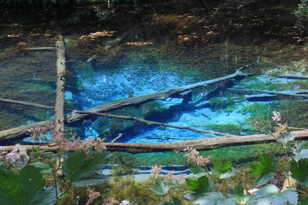 Kaminoko pond