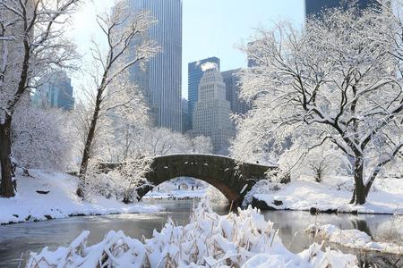 Winterlandschap in New York, Central Park Stockfoto - 87128694