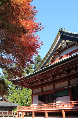 Autumn Foliage at Enryakuji temple, Mt. Hiei