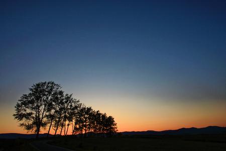Biei field in the evening